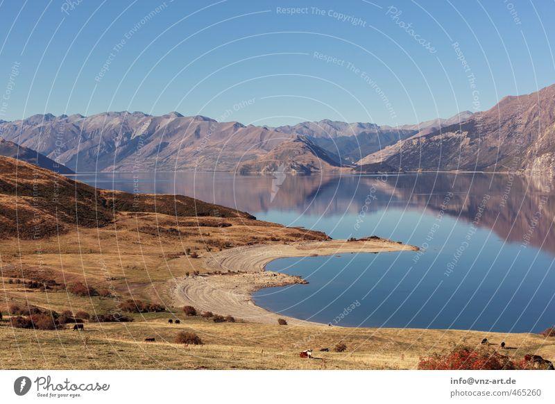 AmSee Himmel Natur blau Landschaft Ferne Umwelt Wiese Gefühle Herbst Freiheit Felsen Stimmung Sträucher Schönes Wetter Aussicht