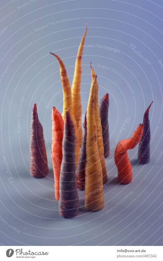Abschnitt blau gelb Lebensmittel stehen Gemüse Bioprodukte Anschnitt Mischung Vegetarische Ernährung Möhre aufgeschnitten