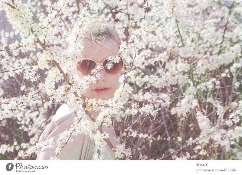 sixties Mensch Jugendliche weiß Pflanze Junge Frau Blume Gesicht Erwachsene 18-30 Jahre feminin Frühling Blüte hell blond Sträucher Brille