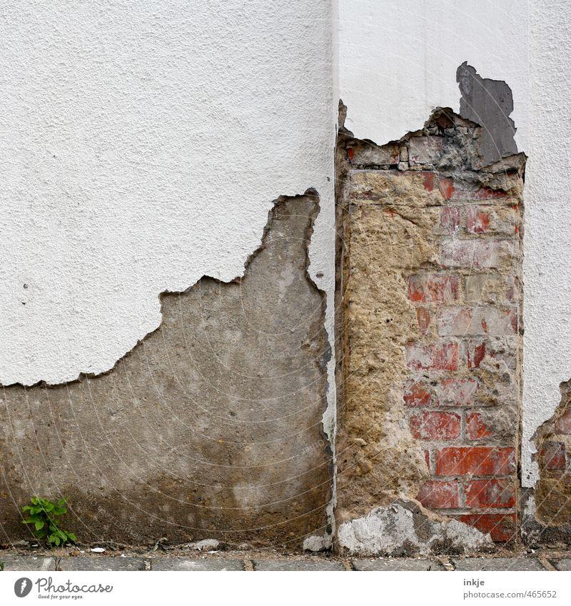 Zahnhalskaries | Mauer alt Wand Stein Linie Fassade Beton kaputt Vergänglichkeit Wandel & Veränderung verfallen Verfall Backstein unten Ruine Putz