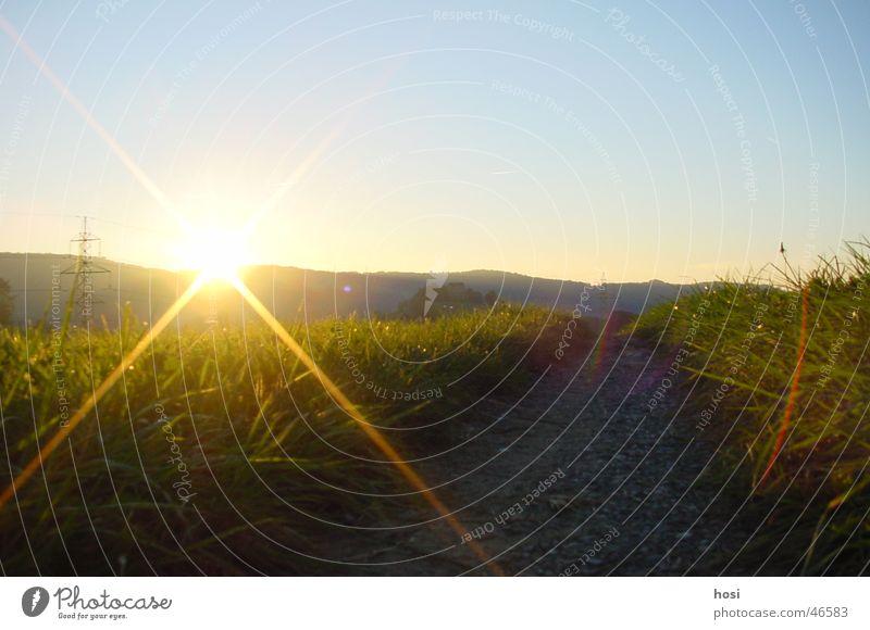 Die Nacht kommt bald Natur Himmel Sonne Gras Freiheit Wege & Pfade Hügel Schönes Wetter
