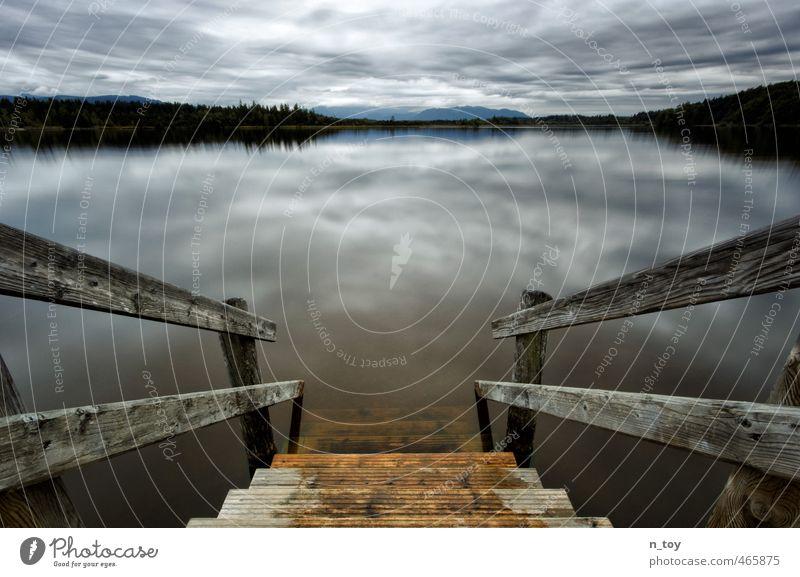 letzter Badetag Natur blau Wasser ruhig Landschaft Wolken Wald Umwelt Gefühle Herbst Schwimmen & Baden Denken See Stimmung braun Idylle