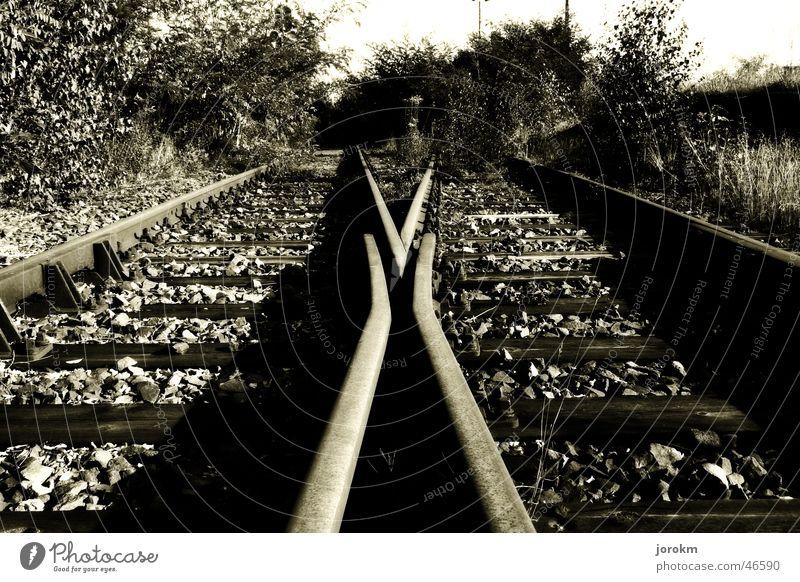 Wohin führt der Weg ? Gleise Richtung Eisenbahn ruhig mehrgleisig Schwarzweißfoto Bahnhof Weiche