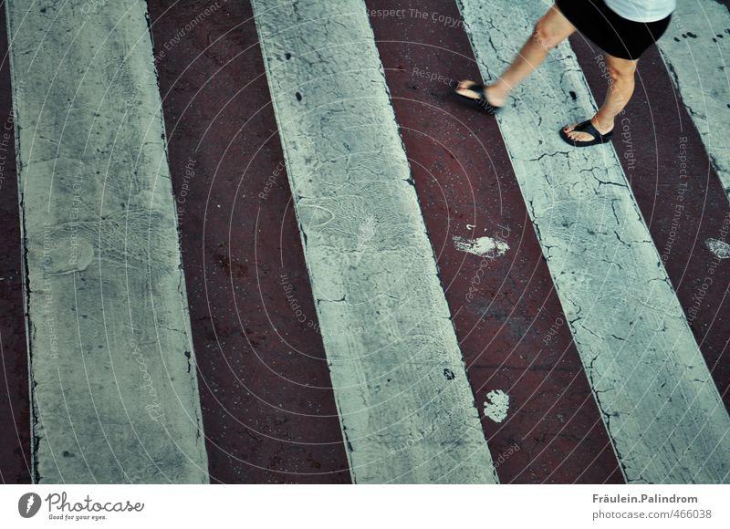 frisch gestrichen! Mensch Frau Stadt Erwachsene Straße feminin Farbstoff Bewegung Wege & Pfade Beine gehen Fuß PKW Geschwindigkeit Eile Verkehrswege