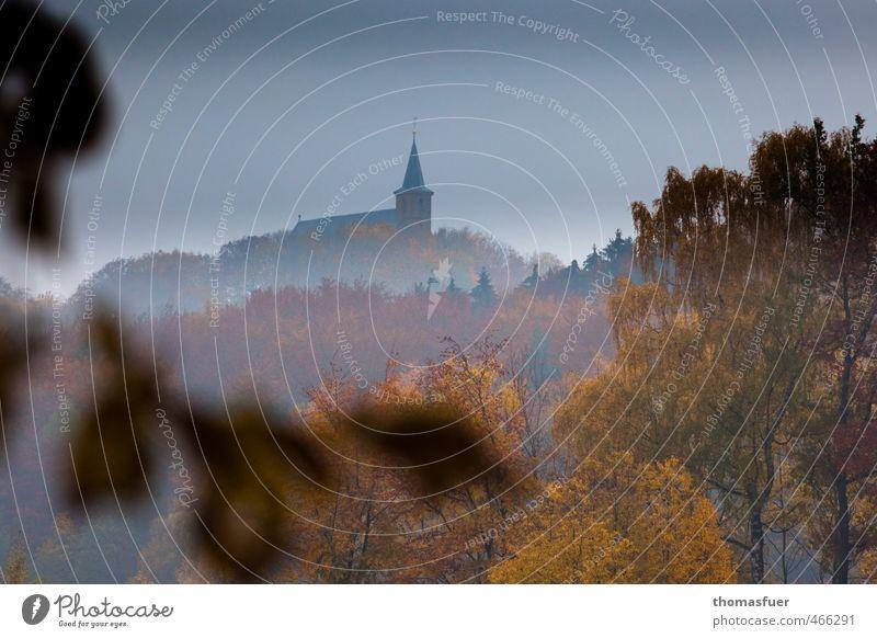 Dornröschenschloß Himmel Natur Baum ruhig Landschaft Tier Ferne Wald Berge u. Gebirge Herbst Horizont Park Nebel wandern Sträucher Ausflug