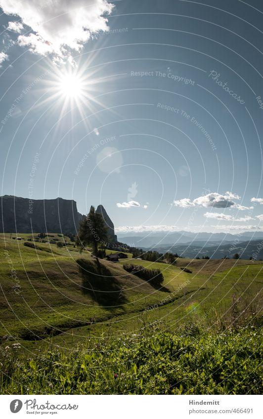 Wochenend und Sonnenschein Ferien & Urlaub & Reisen Tourismus Ausflug Ferne Urelemente Erde Feuer Luft Wasser Himmel Wolken Horizont Sommer Schönes Wetter Baum