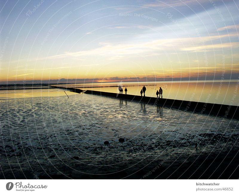 Abends im Watt1 Wattenmeer Wattwandern Küste Sonnenuntergang Nordsee