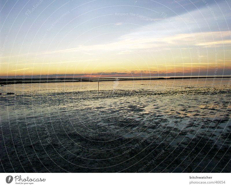 Abends im Watt2 Küste Wattenmeer Sonnenuntergang Ebbe