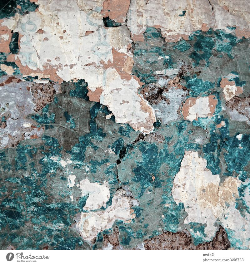 Tapetenwechsel Mauer Wand Fassade dreckig trashig verrückt wild braun mehrfarbig grau türkis weiß bizarr chaotisch Desaster Verfall Vergänglichkeit