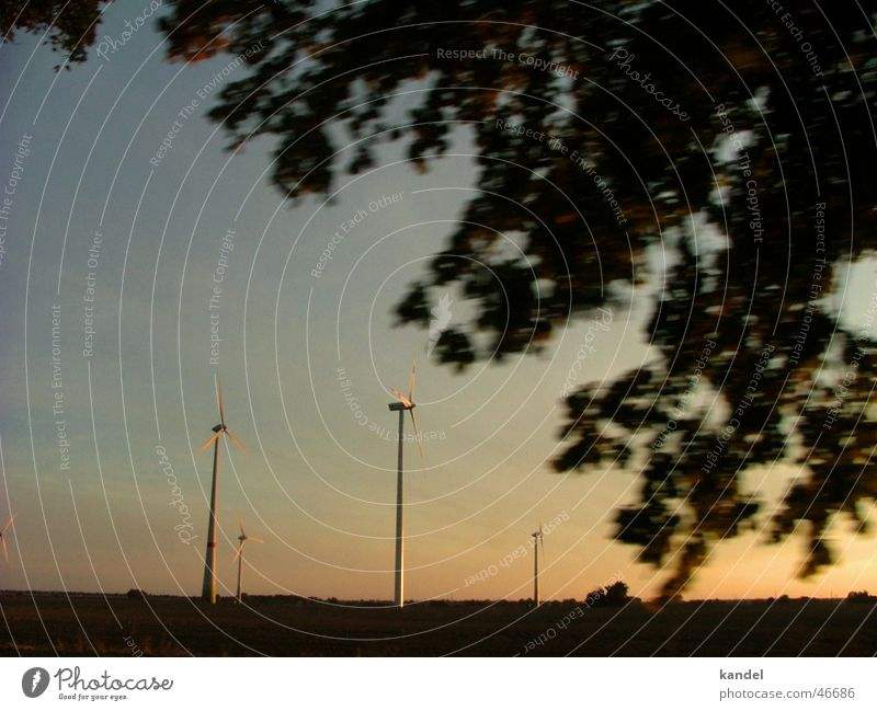 Die Zukunft der Energie Sonnenuntergang Baum Elektrizität Mecklenburg-Vorpommern fahren magic hour Wind Windkraftanlage Energiewirtschaft Natur Abend