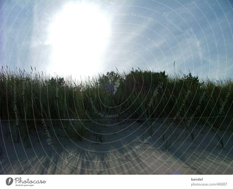 Gestrandet Natur Himmel Sonne Meer Strand Wolken Gras Sand direkt Stranddüne