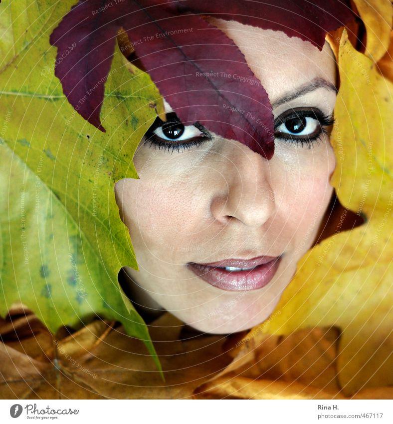 HerbstPortrait schön feminin Junge Frau Jugendliche 1 Mensch 30-45 Jahre Erwachsene Blatt ästhetisch mehrfarbig gelb Auge Blick Mund Lippen Herbstlaub exotisch