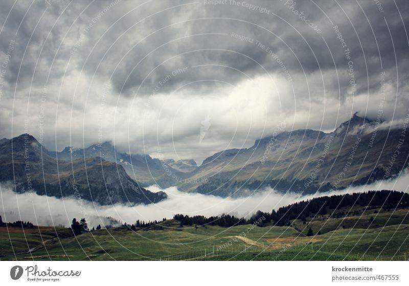 z'Alp Umwelt Natur Landschaft Himmel Wolken Gewitterwolken Baum Gras Grünpflanze Wiese Hügel Alpen Berge u. Gebirge Gipfel Schneebedeckte Gipfel wandern