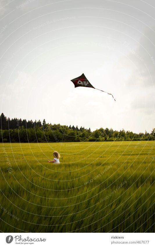 drachenwetter!! Lenkdrachen Drachen steigen feminin Kind Mädchen Kindheit 1 Mensch 3-8 Jahre Umwelt Natur Sommer Herbst Feld laufen rennen frei Fröhlichkeit