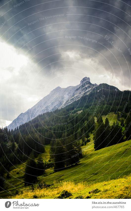 postkartengrüße aus tirol: 1€ Natur Ferien & Urlaub & Reisen Sonne Baum Erholung ruhig Landschaft Wolken Ferne Umwelt Berge u. Gebirge Wiese Herbst Gras
