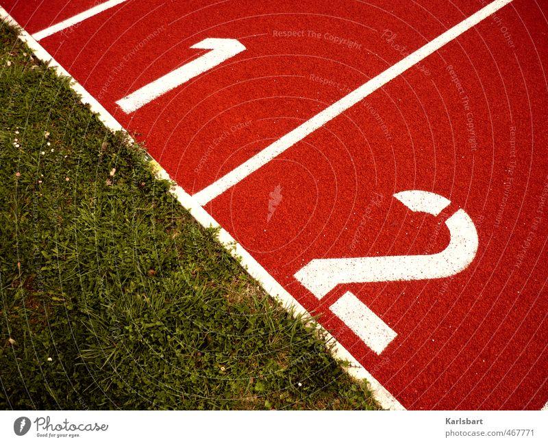 Eins geteilt durch zwei. Wiese Sport 1 Bewegung Gras Spielen Linie Freizeit & Hobby Erfolg Laufsport Fitness Streifen Ziffern & Zahlen Zeichen Rasen Team
