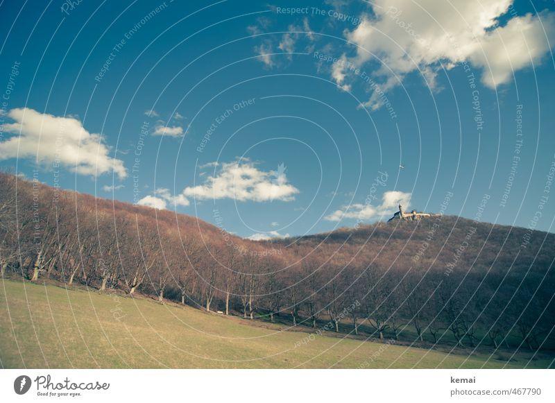 Love your Heimat // Die Burg Teck Himmel Natur blau Sommer Baum Landschaft Wolken Wald Umwelt Wiese hoch Schönes Wetter viele Hügel Burg oder Schloss Sehenswürdigkeit