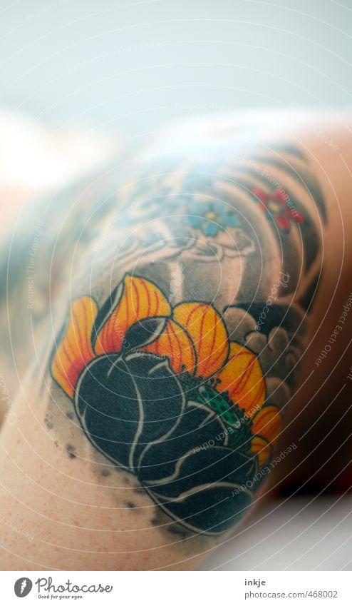tätowieren | piekst Lifestyle Stil Design exotisch Freizeit & Hobby Mann Erwachsene Leben Haut Schulter 1 Mensch 30-45 Jahre Kunst Kunstwerk Tattoo Blume Blüte