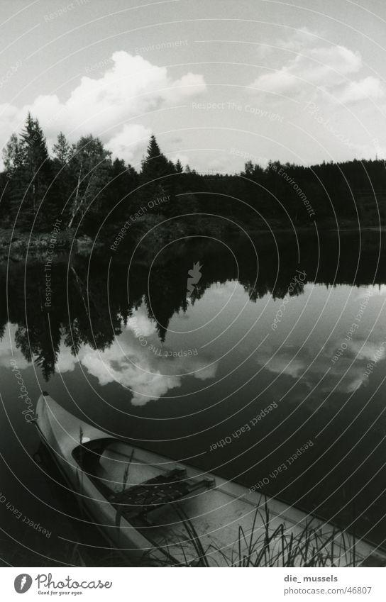 spiegelsee Wald See Wasserfahrzeug Spiegel