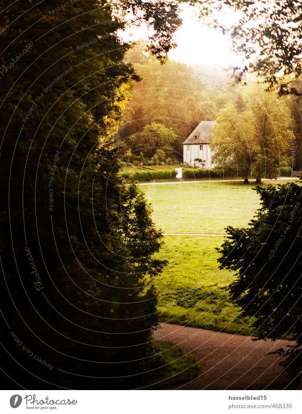 Goethes Morgen Ferien & Urlaub & Reisen Sommer Erholung Haus Leben Stil Garten Park elegant Zufriedenheit Lifestyle Design Tourismus wandern Ausflug Abenteuer