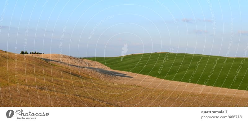 Terra di Siena Ferien & Urlaub & Reisen Ferne Freiheit Sommer Umwelt Natur Landschaft Himmel Horizont Schönes Wetter Feld Hügel Toskana Italien Europa
