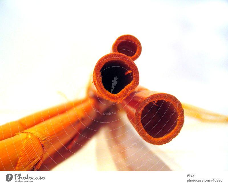Bambusrohre II Holz orange Dekoration & Verzierung tief Stock