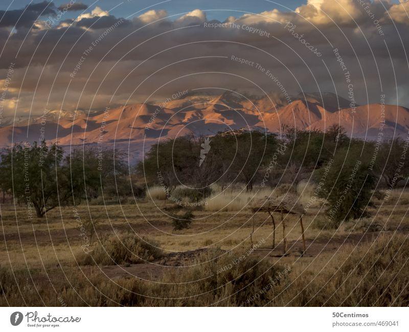 Der Sturm ist vorüber Natur Ferien & Urlaub & Reisen Baum Landschaft ruhig Ferne Umwelt Berge u. Gebirge Freiheit Sand Erde Tourismus wandern Klima Ausflug