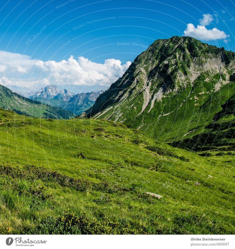 Grünfutter Himmel Natur Ferien & Urlaub & Reisen grün Pflanze Sommer Erholung Einsamkeit Landschaft ruhig Wolken Umwelt Berge u. Gebirge Wiese Gras Felsen