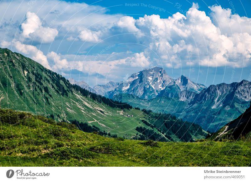 Bergsommer 2 Ferien & Urlaub & Reisen Tourismus Berge u. Gebirge wandern Umwelt Natur Landschaft Himmel Wolken Sommer Schönes Wetter Baum Gras Wiese Felsen