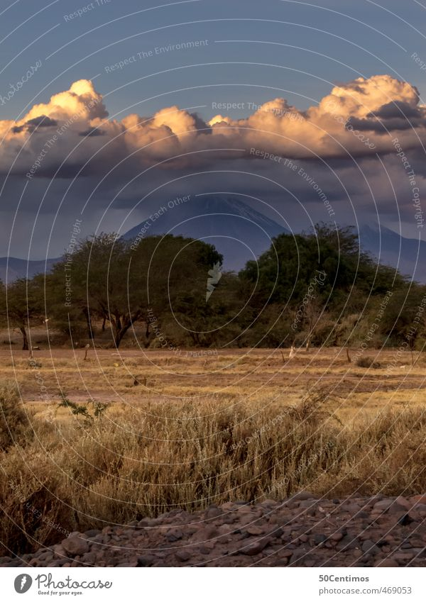 Abenddämmerung in der Wüste von San Perdo de Atacama, Chile Himmel Landschaft ruhig Wolken Ferne kalt Umwelt Berge u. Gebirge Freiheit braun Stimmung Feld Klima