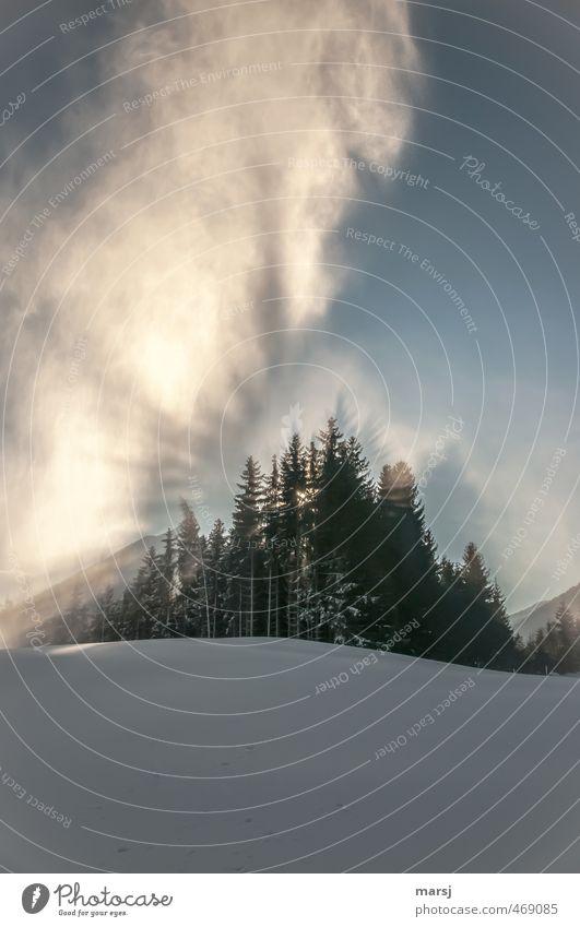 Lange dauert´s nicht mehr Himmel Natur Ferien & Urlaub & Reisen blau Sonne Baum Landschaft Wolken Winter Wald Berge u. Gebirge Schnee Freiheit außergewöhnlich träumen Stimmung