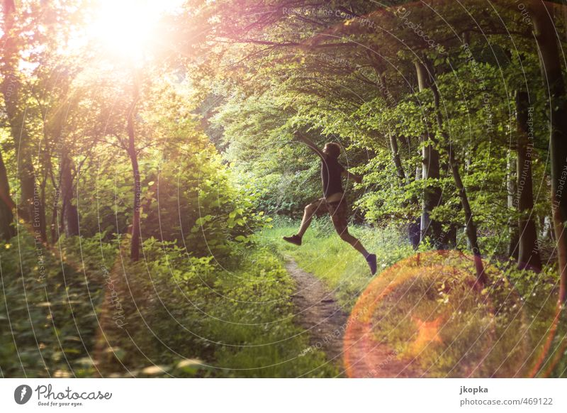 Forrest Jump Leben Joggen wandern Mensch maskulin Junger Mann Jugendliche 1 18-30 Jahre Erwachsene Natur Frühling Sommer Wald T-Shirt springen Fröhlichkeit