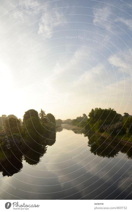 Good morning Baume Himmel Natur Wasser Landschaft Kraft Schönes Wetter Erwartung Vorfreude