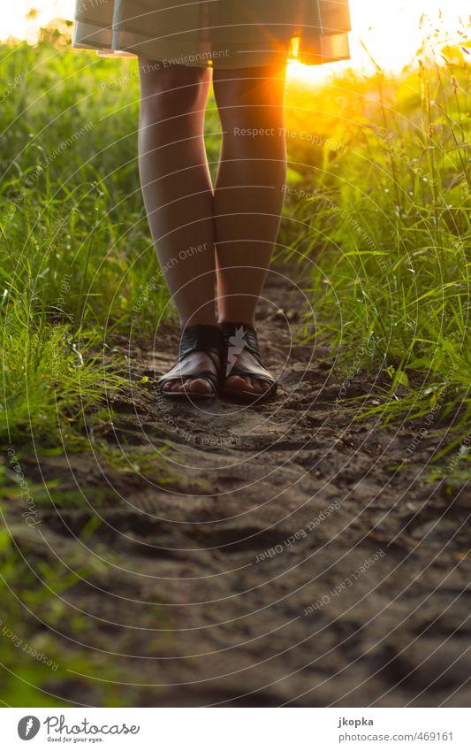Beauty in Nature Mensch Frau Jugendliche Sommer ruhig Junge Frau Erwachsene 18-30 Jahre feminin Gras Frühling Feld elegant stehen wandern