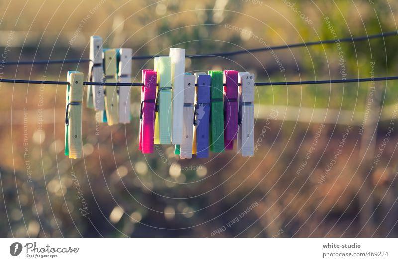 Rudelbildung Accessoire Erholung Wäscheklammern Bekleidung trocknen trocken Freundschaft Clique aufhängen Wäschetrockner Wäscheleine Wäscherei Wäsche waschen