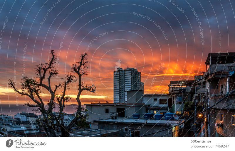 Über den Dächern einer Favela in Rio de Janeiro Ferien & Urlaub & Reisen Tourismus Ausflug Abenteuer Ferne Sommerurlaub Sonnenbad Strand Meer Baum Stadt Skyline