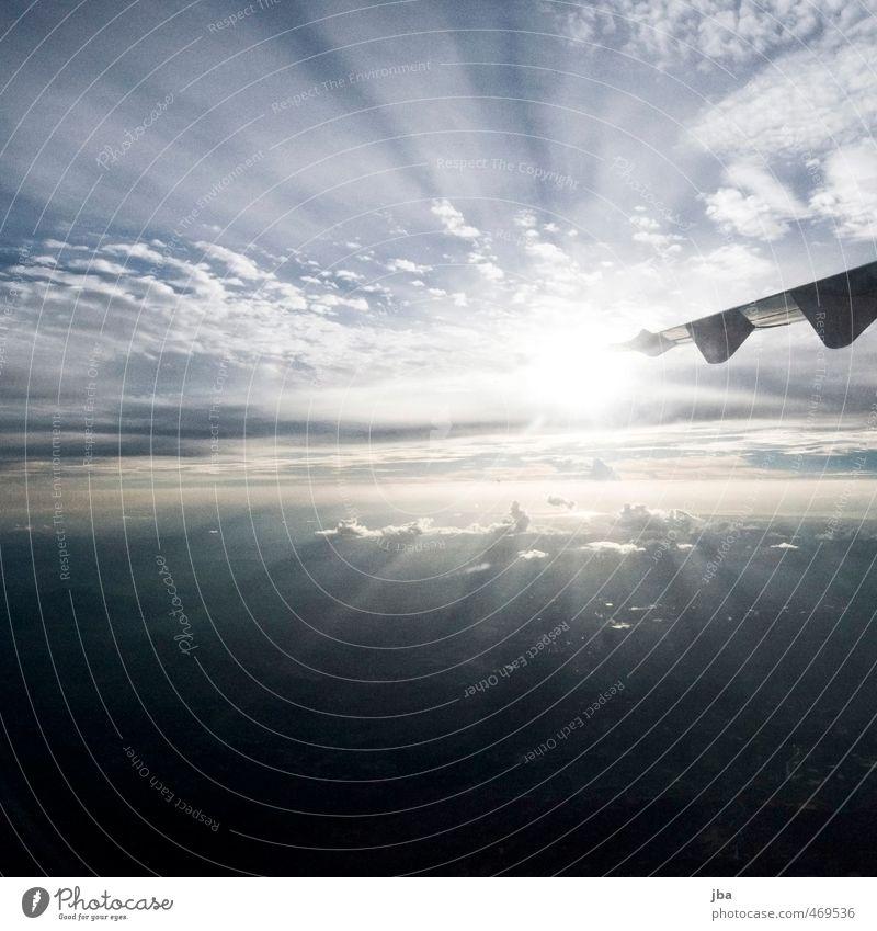 Flug in die Sonne Himmel Ferien & Urlaub & Reisen blau Sommer Ferne hell Luft fliegen Tourismus Luftverkehr Flugzeug Tragfläche Vorfreude Personenverkehr