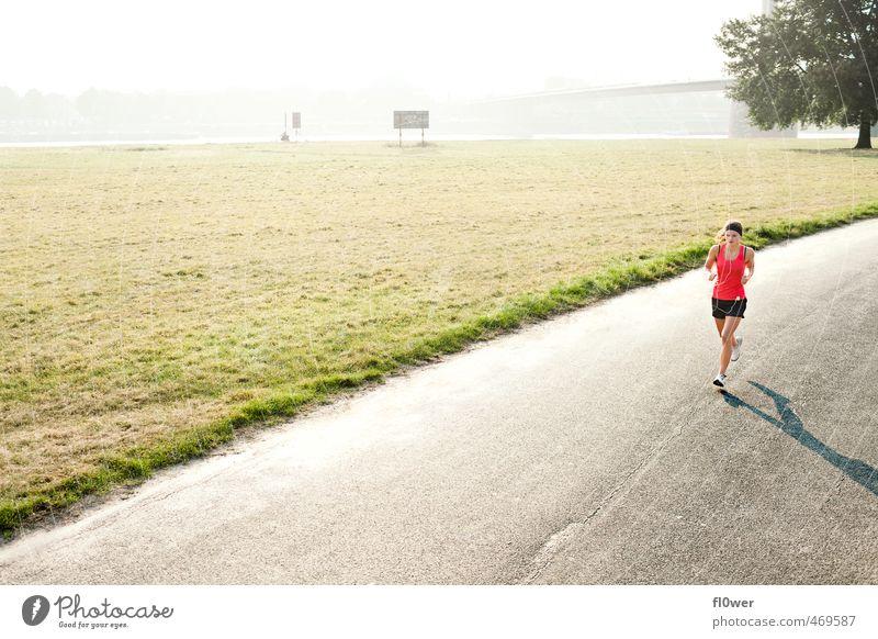 Frau joggt auf der Straße im grünen am Rhein mit Gegenlicht Sport Fitness Sport-Training Joggen feminin Junge Frau Jugendliche 1 Mensch 13-18 Jahre Kind