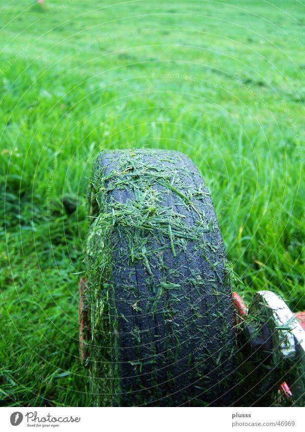 im vorwärtsgang grün Wiese Gras Bewegung Feld dreckig nass Streifen vorwärts Maschine Halm Rasenmäher Gummireifen