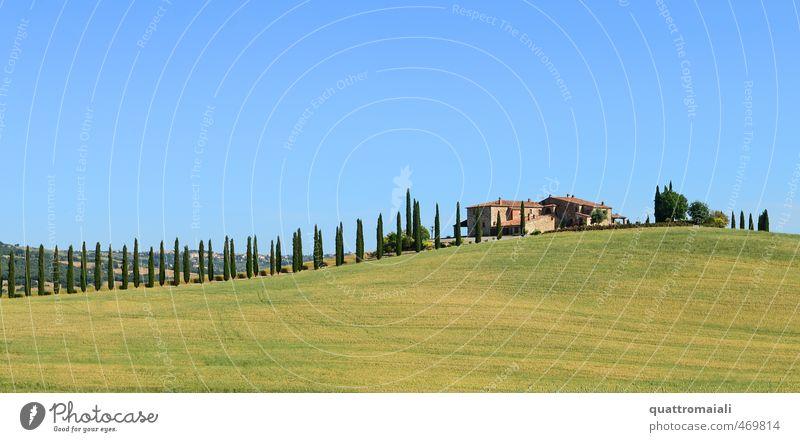 Der Klassiker in der Toskana Ferien & Urlaub & Reisen Sommer Sonne Traumhaus Landschaft Wolkenloser Himmel Schönes Wetter Zypresse Hügel Italien Europa Haus