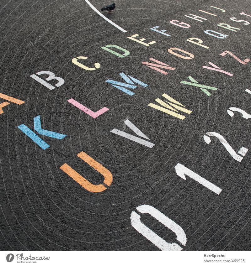 Straßen-ABC Schriftzeichen Ziffern & Zahlen mehrfarbig alphabetisch Lateinisches Alphabet Taube Asphalt Ordnung Farbfoto Außenaufnahme Menschenleer