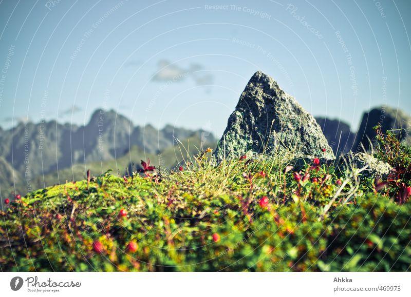 (Vanille)gipfel Natur Ferien & Urlaub & Reisen Landschaft Freude Ferne Berge u. Gebirge klein Freiheit Design Tourismus Sträucher Perspektive Ausflug