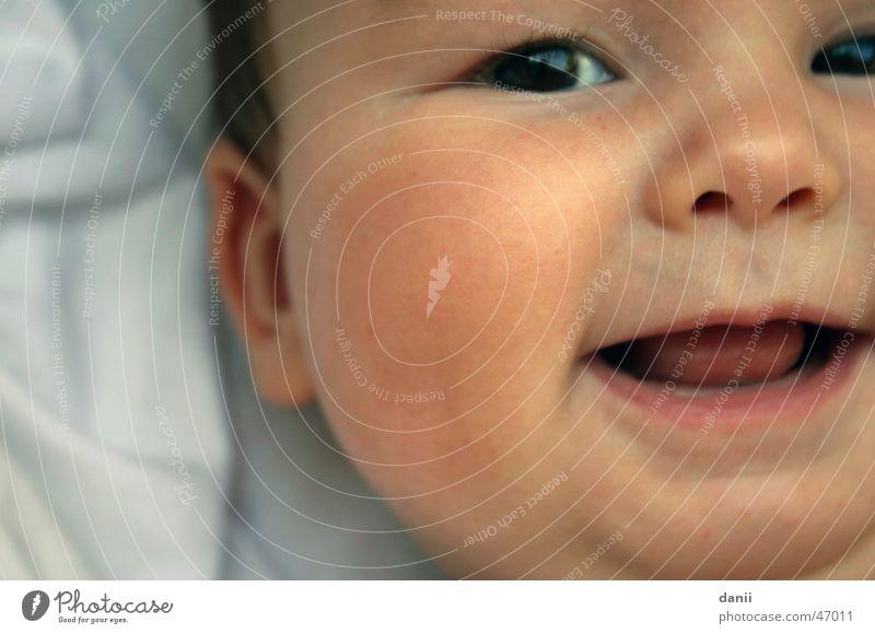 Helena Baby Kind klein Fröhlichkeit Mensch Detailaufnahme Nase lachen Nahaufnahme Gesicht Auge