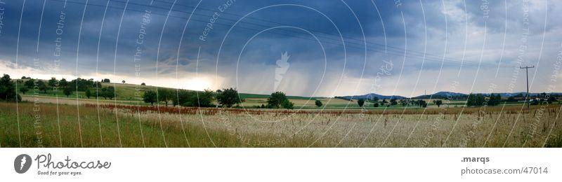 Etwas zieht auf Farbfoto Außenaufnahme Textfreiraum oben Tag Panorama (Aussicht) Sommer Natur Landschaft Wolken Unwetter Sturm Regen Baum Wiese Feld bedrohlich
