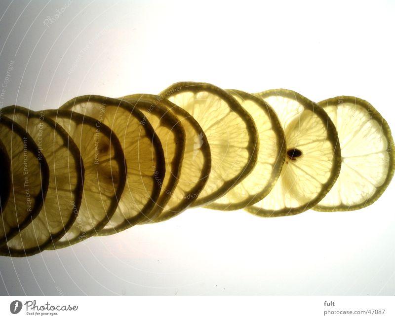 Zitronenscheiben / Lemon panes Natur gelb Gesundheit Frucht Vitamin Fruchtfleisch