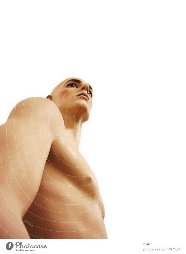 nacked Mann nackt Froschperspektive Akt Mensch Körper Brust Bauch Arme Kopf Nase Auge Muskulatur nude Männlicher Akt