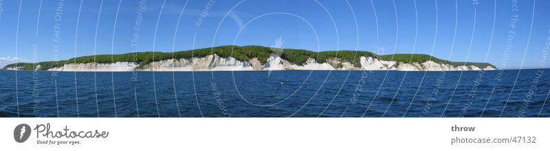 Kreideküste Natur Wasser alt Himmel Sonne Meer grün blau Pflanze Sommer Strand Ferien & Urlaub & Reisen Tier Ferne Gras Freiheit