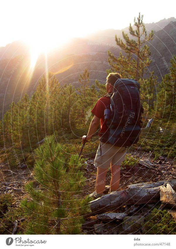 Sonnenaufgang am GR20 Mann Baum wandern Pause Aussicht genießen tragen Frankreich Rucksack Korsika