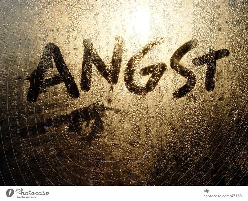 angst Wasser Sonne dunkel kalt Fenster grau Traurigkeit Graffiti hell Angst Glas Nebel Wassertropfen nass gold Trauer