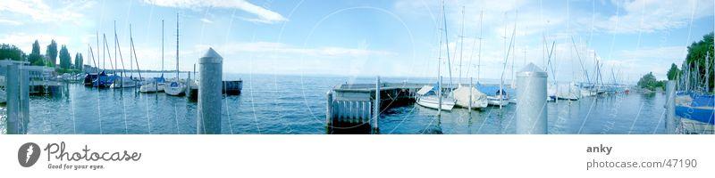 seeblick Wasser Ferien & Urlaub & Reisen Ferne See Wasserfahrzeug groß Segeln Panorama (Bildformat) Segelboot Bodensee